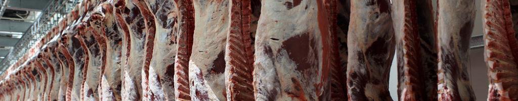 vierre-carne-bovina